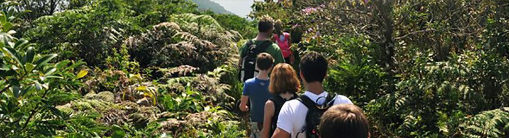 Enviromental education, nature, awareness